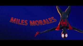 Spider-Man: Into the Spider-Verse - Alternate Trailer 4