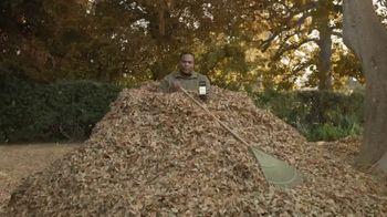 Man Rakes 3,007 Bags of Leaves thumbnail