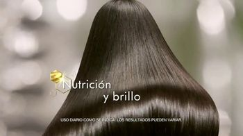 Tío Nacho Younger Looking TV Spot, 'Rejuvenece tu cabello' [Spanish] - Thumbnail 7