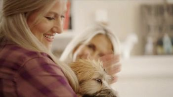 Bissell Pet Stain Eraser TV Spot, 'Messy Residents' - Thumbnail 1