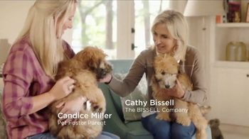 Bissell Pet Stain Eraser TV Spot, 'Messy Residents'