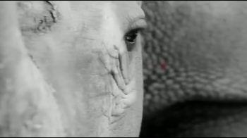 San Diego Zoo Global Wildlife Conservancy TV Spot, 'Five Left' - Thumbnail 2