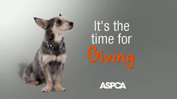 ASPCA TV Spot, 'Help Animals This Giving Tuesday' - Thumbnail 1