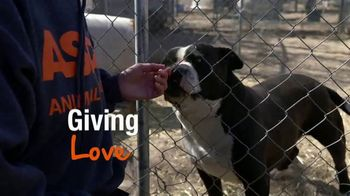 ASPCA TV Spot, 'Help Animals This Giving Tuesday' - Thumbnail 2