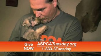 ASPCA TV Spot, 'Help Animals This Giving Tuesday' - Thumbnail 7