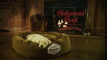 Hollywood Feed TV Spot, \'More Than Just a Dog Bed\'