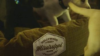 Hollywood Feed TV Spot, 'More Than Just a Dog Bed' - Thumbnail 2