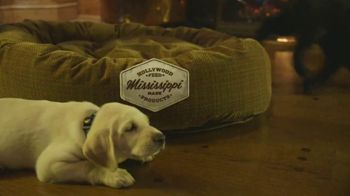 Hollywood Feed TV Spot, 'More Than Just a Dog Bed' - Thumbnail 3