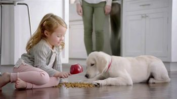 Purina TV Spot, 'Big Moments: Safe Dog Food Using Quality Ingredients' - Thumbnail 3