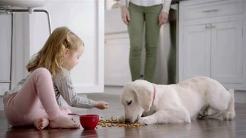 Purina TV Spot, 'Big Moments: Safe Dog Food Using Quality Ingredients'