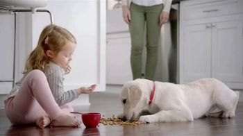 Purina TV Spot, 'Big Moments: Safe Dog Food Using Quality Ingredients' - Thumbnail 6