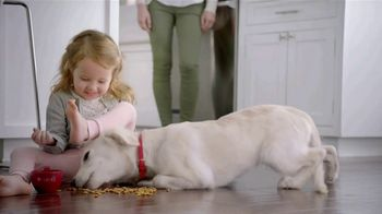 Purina TV Spot, 'Big Moments: Safe Dog Food Using Quality Ingredients' - Thumbnail 8