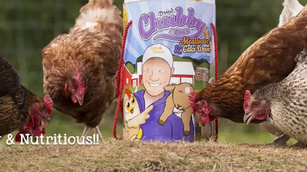 Chubby Mealworms Coop Dreams Tub TV Commercial, 'One Year Supply'