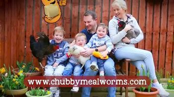 Chubby Mealworms Coop Dreams Tub TV Spot, 'One Year Supply' - Thumbnail 4