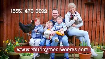 Chubby Mealworms Coop Dreams Tub TV Spot, 'One Year Supply' - Thumbnail 5