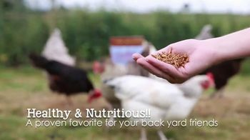 Chubby Mealworms Coop Dreams Tub TV Spot, 'One Year Supply' - Thumbnail 7