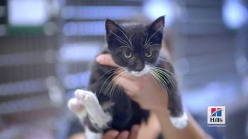 Lift a Pet: Clear the Shelters thumbnail
