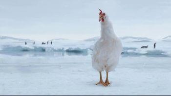 Sanderson Farms TV Spot, 'Penguins'