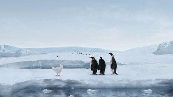 Sanderson Farms TV Spot, 'Penguins' - Thumbnail 10