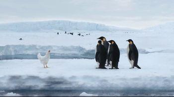 Sanderson Farms TV Spot, 'Penguins' - Thumbnail 4