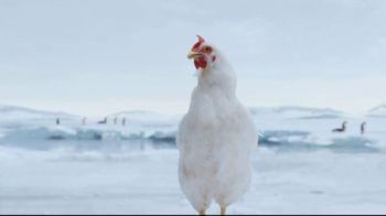 Sanderson Farms TV Spot, 'Penguins' - Thumbnail 7