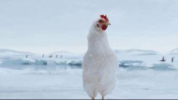 Sanderson Farms TV Spot, 'Penguins' - Thumbnail 8