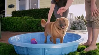 Blue Buffalo Foundation TV Spot, 'Pet Cancer Awareness'