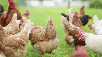 American Humane Association TV Spot, 'Farm PSA' - Thumbnail 2
