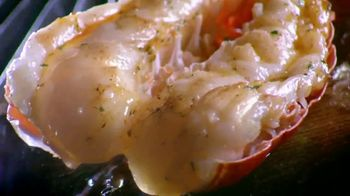 Red Lobster Lobster & Shrimp Summerfest TV Spot, 'Have Your Lobster' - Thumbnail 4