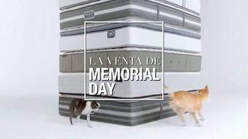 Macy's Venta de Memorial Day TV Spot, 'Perros' [Spanish] - Thumbnail 2