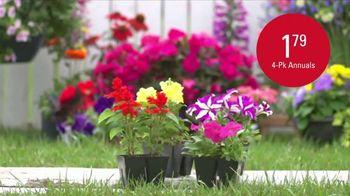 Shopko Memorial Day Sale TV Spot, 'Everything You Need' - Thumbnail 5