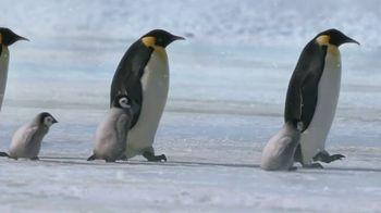 Metro by T-Mobile TV Spot, 'Penguins' Song by Usher - Thumbnail 1