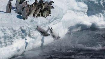 Metro by T-Mobile TV Spot, 'Penguins' Song by Usher - Thumbnail 2