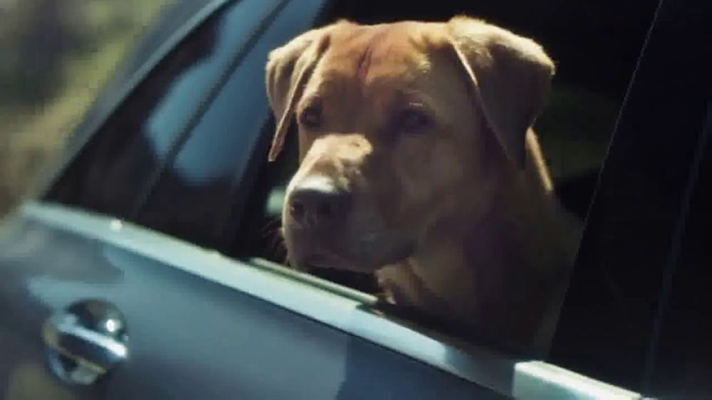 Mercedes-Benz Summer Event TV Commercial, 'Rescue' Song by ...