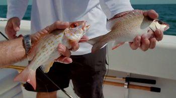 Florida's Paradise Coast TV Spot, 'Fishing in Paradise' - Thumbnail 8