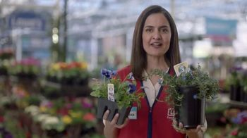 Lowe's TV Spot, 'Gardening Gene: 12-Pack Annuals' - Thumbnail 7