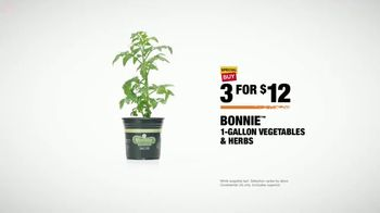 The Home Depot TV Spot, 'Confidence Boost: Herbs & Vegetables' - Thumbnail 8