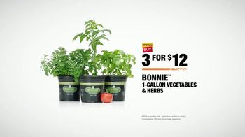 The Home Depot TV Spot, 'Confidence Boost: Herbs & Vegetables' - Thumbnail 9