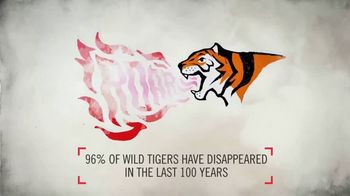 World Wildlife Fund TV Spot, 'Wild Tigers Could Disappear'