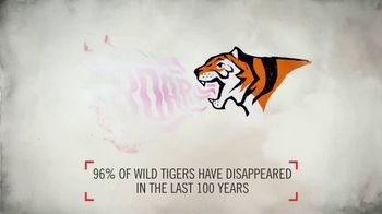 World Wildlife Fund TV Spot, 'Wild Tigers Could Disappear' - Thumbnail 3