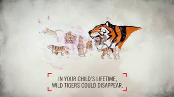 World Wildlife Fund TV Spot, 'Wild Tigers Could Disappear' - Thumbnail 4