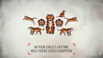 World Wildlife Fund TV Spot, 'Wild Tigers Could Disappear' - Thumbnail 5