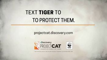 World Wildlife Fund TV Spot, 'Wild Tigers Could Disappear' - Thumbnail 7