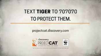 World Wildlife Fund TV Spot, 'Wild Tigers Could Disappear' - Thumbnail 8
