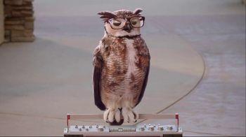 America's Best Contacts and Eyeglasses Designer Sale TV Spot, 'Runway'