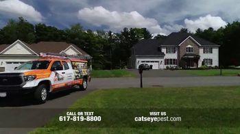 Catseye Pest Control TV Spot, 'Eliminate Bats' - Thumbnail 1