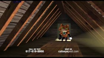 Catseye Pest Control TV Spot, 'Eliminate Bats'