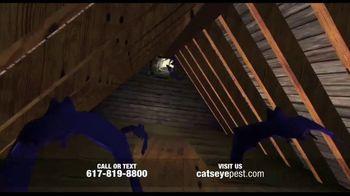 Catseye Pest Control TV Spot, 'Eliminate Bats' - Thumbnail 4