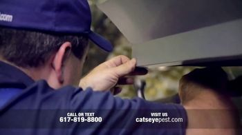Catseye Pest Control TV Spot, 'Eliminate Bats' - Thumbnail 5