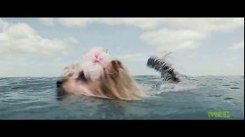 The Meg - Alternate Trailer 40